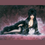 Elvira Mistress of the Dark Costumes