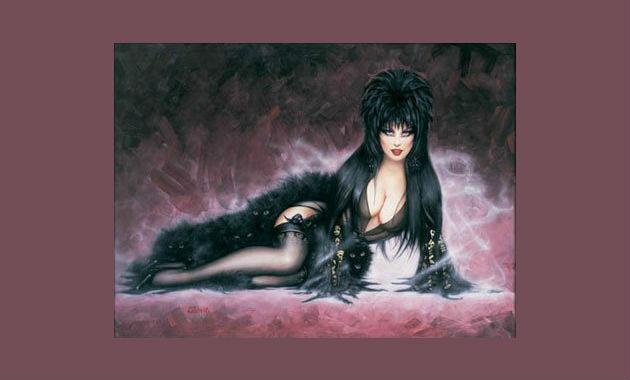 Elvira Mistress of the Dark Costumes